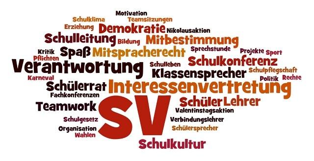 Neue SV am BBZ Schleswig